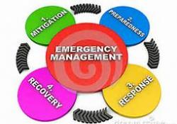 Emergency Management Steps Graph